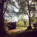 Newnham's gardens